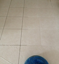 Tile & Grout Cleaning Services Canberra